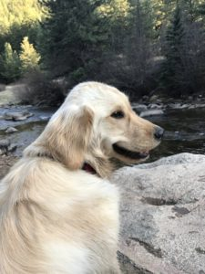 Shelby smiling at river in Colorado